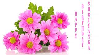 Shriyanka   Flowers & Flores - Happy Birthday