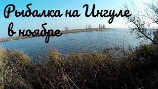 Ингул Мешково Погорелово Рыбалка в ноябре в реке на фидер и донки