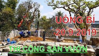 Trồng cây Trang trí Hồ cá Koi & Sân vườn nhà bác Việt ở Quảng Ninh, ngày 20.9.2019