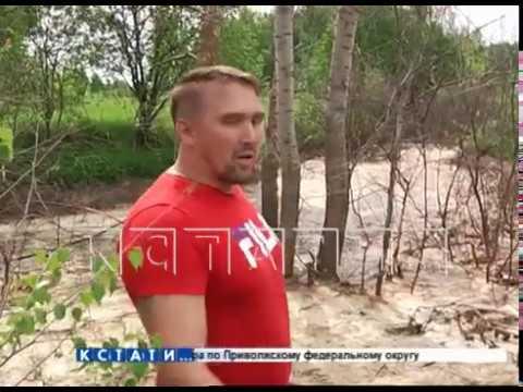 Молокозавод, бывший рассадником антисанитарии, сбежал, свалив гниющие останки в лесу
