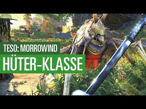 TESO Morrowind Hüter - So spielt sich die Klasse - Special #02