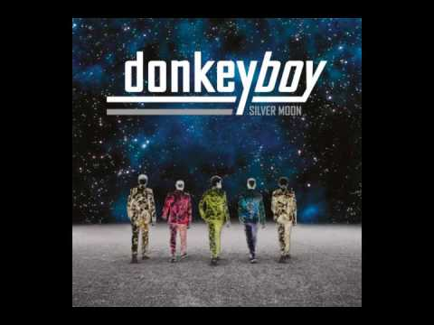 Donkeyboy - On Fire (HQ) mp3