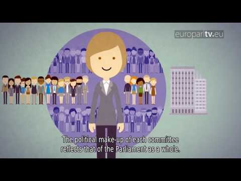 How it works: European Parliament Committees