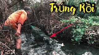 Bẩy Cá 12 Cửa Cặp Bìa Rừng Trúng Hàng Ngon