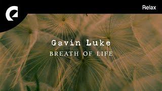 Скачать Gavin Luke Breath Of Life