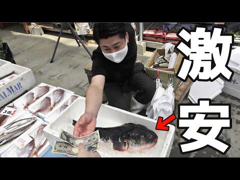 訳ありの巨大トラフグが2000円で売ってたのでさばいてみたら、訳ありすぎた。