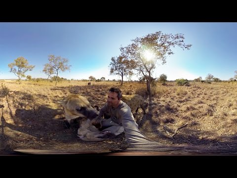 GoPro VR: Hyenas Wrestling With Kevin Richardson