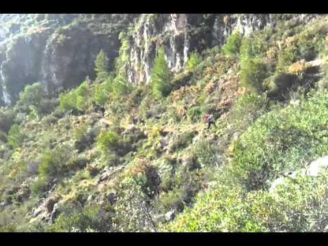 video - 2011-11-26-10-29-25.mp4