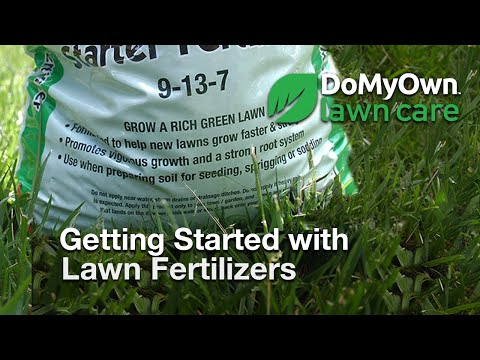 How to Select the Best Fertilizer for Your Lawn | DoMyOwn com