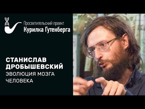 Эволюция мозга человека – Станислав Дробышевский