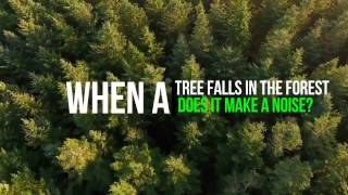 Trees Be Trippin'   Lord Lumberjack ClubLife Music Video
