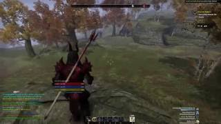 PERFECT TIMING (ESO PvP)