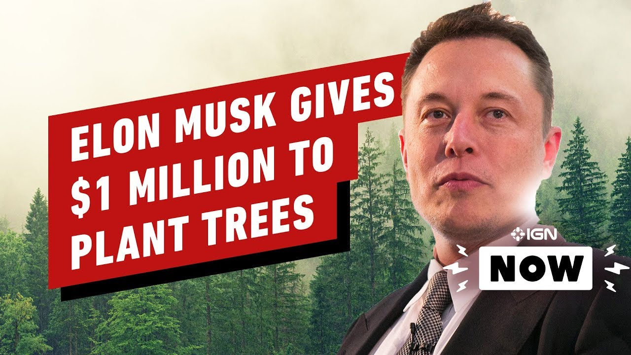 Elon Musk fait don de 1 million de dollars à la charité de YouTuber - IGN maintenant + vidéo