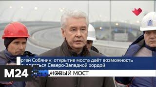 """Смотреть видео """"Москва и мир"""": новый мост и закон о насилии - Москва 24 онлайн"""