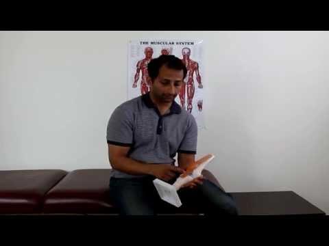 Patellar Tendonitis Treatment - Why Ice and Anti-inflammatories Don't Work | Manu Kalia | Video 135