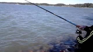 вот это рыбалка я был в шоке