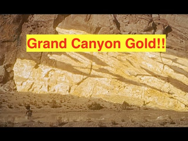 roota-and-the-grand-canyon-gold-bix-weir