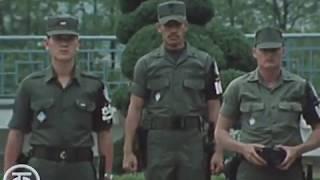 Тридцать восьмая параллель (1981)