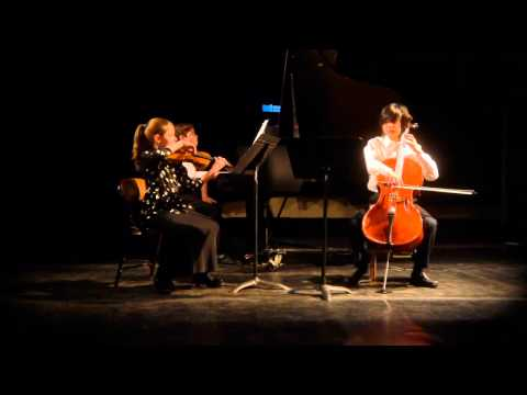 Gebauer Trio In DM