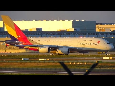AMAZING Asiana Airbus A380 [HL7641] SUNSET Takeoff from Frankfurt Airport FRA [Full HD]