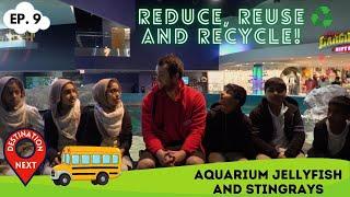 Destination Next | Episode 9 | Aquarium Jellyfish and Stingrays
