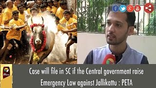Case will file in SC if the Central government raise Emergency Law against Jallikattu : PETA