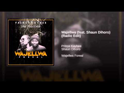 Wajellwa (feat. Shaun Dihoro) (Radio Edit)