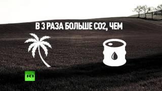 Ученые доказали, что биотопливо наносит вред окружающей среде