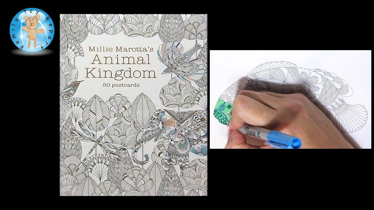 Millie Marottas Animal Kingdom 50 Postcards Adult Coloring Book Fish