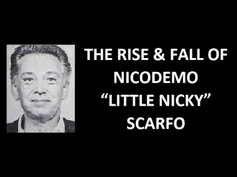 The Rise & Fall of Nicodemo