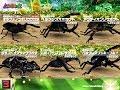 [アーケード] 甲虫王者 ムシキング - つよさ200 最強のカブト と クワガタ VS アダー…