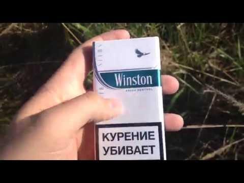 Обзор Winston Fresh Menthol