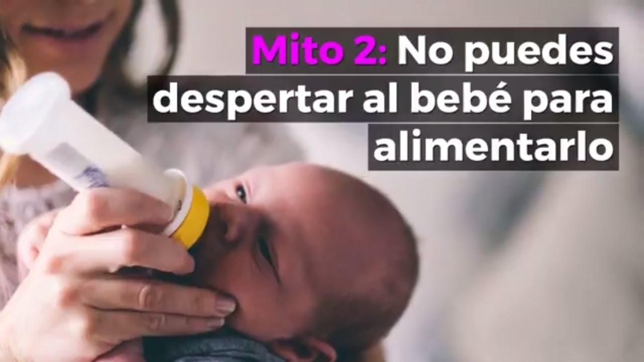 Agua de oregano para bebes recien nacidos