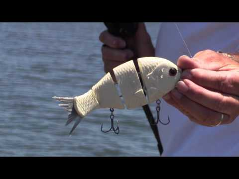 Capt. Mike Carter Bull Shad Fishing tips for Lake Guntersville