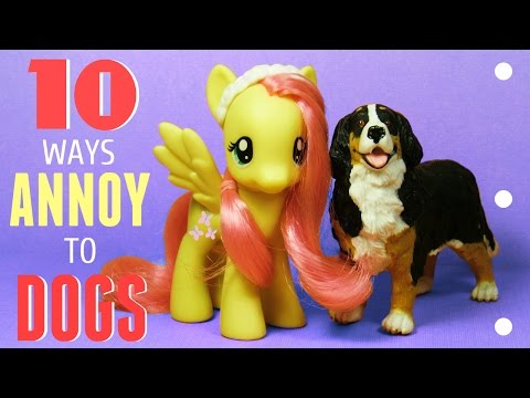 MLP 10 Ways To Annoy Your DOGS