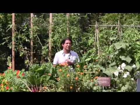 Groundbreaking Food Garden at Toronto Botanical Garden