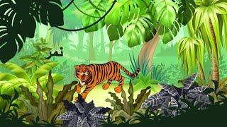 حيوانات الغابة/Jungle animals