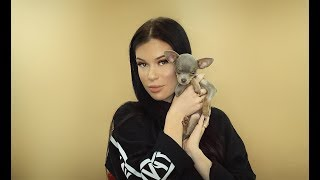 PICKING UP MY BLUE CHIHUAHUA PUPPY !!!   VLOG