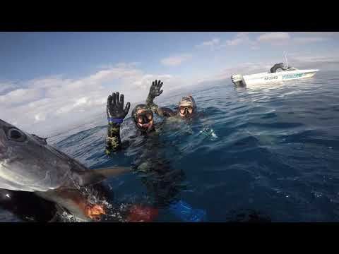 Spearfishing Out Of Port Douglas