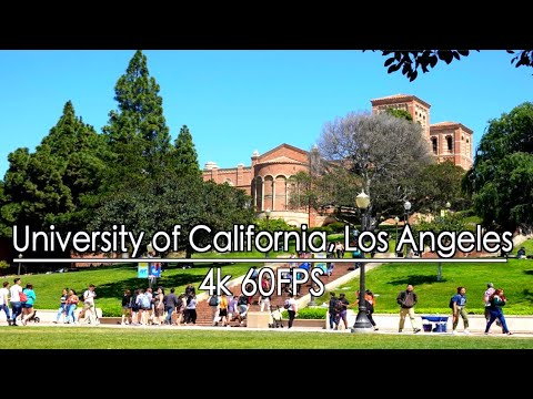 walking-around-westwood-to-university-of-california,-los-angeles,-los-angeles,-4k-60,-natural-sounds