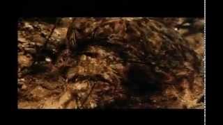 1983 Cannibal Movie 360p