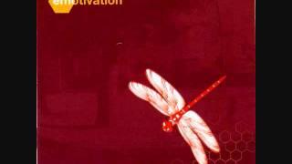 Track 10 del disco Emotivation del año 2001 de la banda de ska-punk...