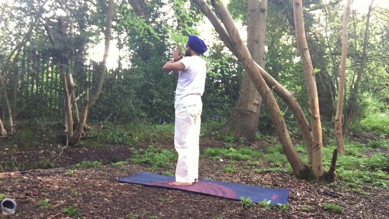 Yoga in Nature - Meditation in Motion