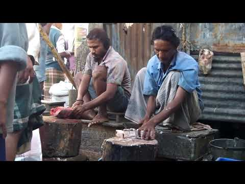Urly morning to the Fishari Fish Market in Chittagong , Bangladesh 2 of 12
