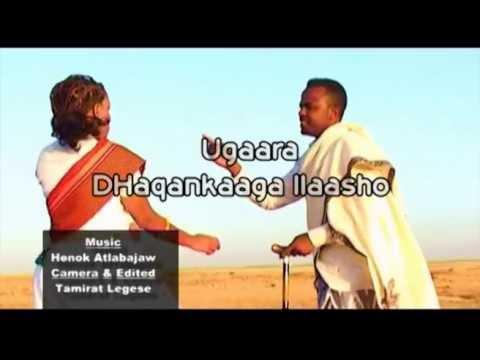 Download Dhaanto Axmed Budul Iyo Nimco Dareen