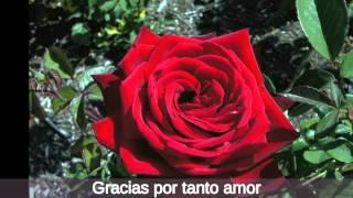 Gracias por tanto amor - Joan Sebastian