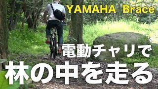 ヤマハの電動自転車「ブレイス」で西公園(福岡市内にある小高い山)に...