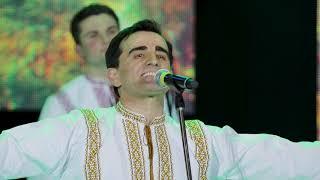 Nicolae Gribincea & Plăieșii - Frunză verde trei alune
