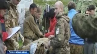 Вести-Хабаровск. Тигр Владик выпущен на свободу