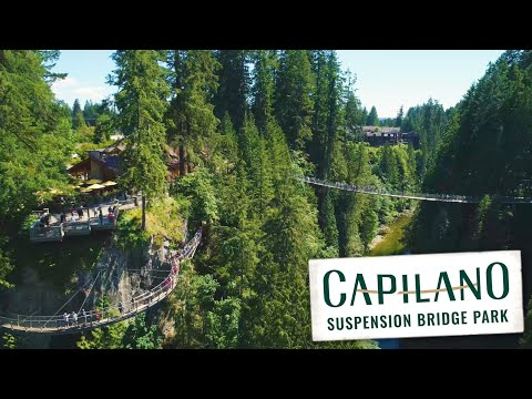 Kia North Vancouver >> Capilano Suspension Bridge Park Tickets - District of North Vancouver | Expedia